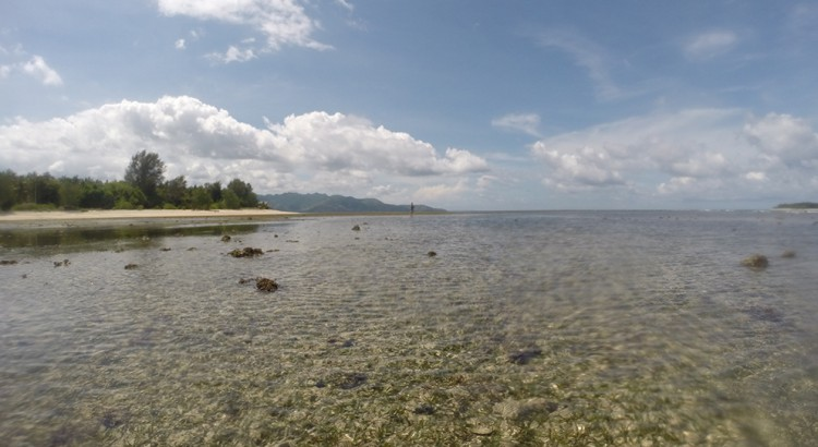 Shark Point Gili Air