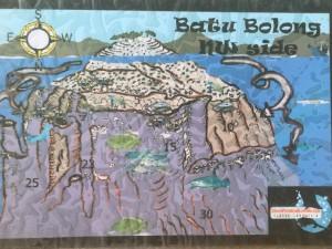 Inmersión Batu Bolong