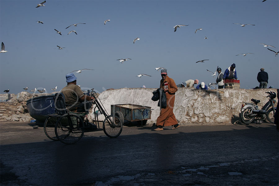 Essaouira camino al puerto