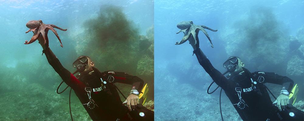 tutorial de fotografia submarina
